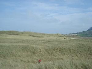 Strandhill 6